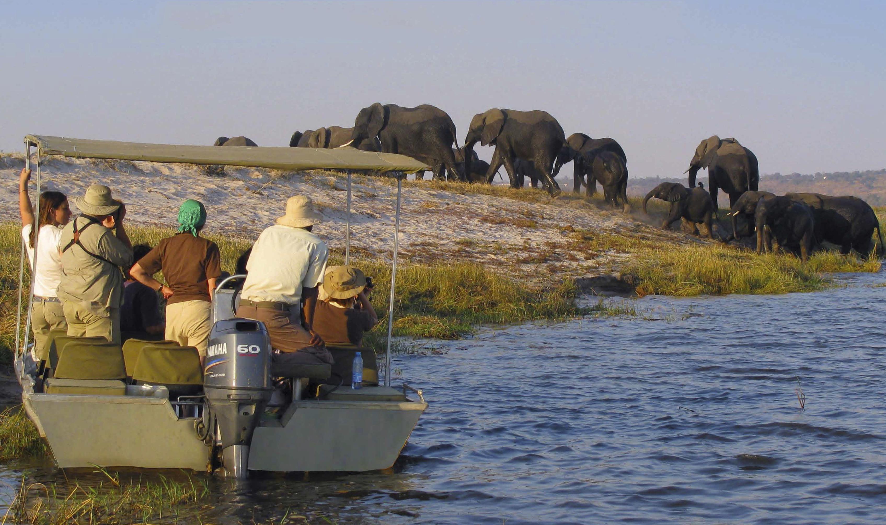 African Safari Expedition